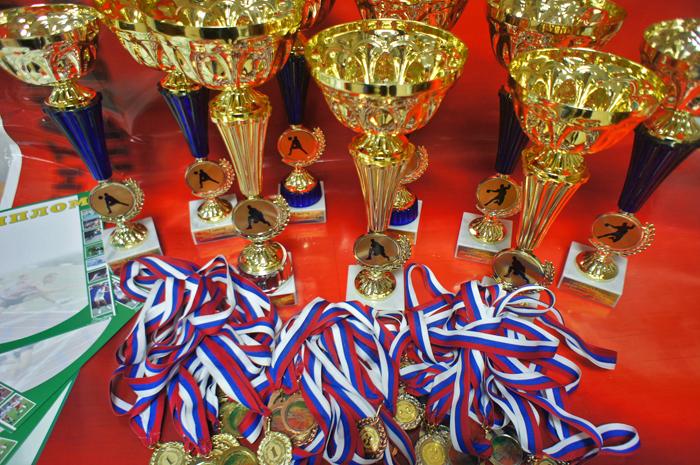 Последние новости ЗАО Сан Сан  Победителям спортивных мероприятий будут вручены медали кубки призы и дипломы